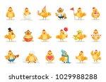 little yellow chicken chick... | Shutterstock .eps vector #1029988288