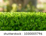 artificial turf with sunshine | Shutterstock . vector #1030005796