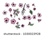 hand drawn sakura vector set... | Shutterstock .eps vector #1030023928