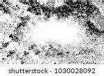 black and white halftone....   Shutterstock .eps vector #1030028092