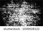 black and white halftone....   Shutterstock .eps vector #1030028122