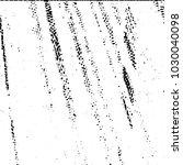 black and white grunge stripe... | Shutterstock .eps vector #1030040098