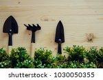 home gardening  planting... | Shutterstock . vector #1030050355