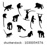 a set of animal silhouettes.... | Shutterstock .eps vector #1030054576