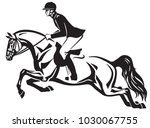 horse and rider jumping over a... | Shutterstock .eps vector #1030067755
