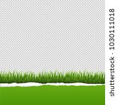 green grass and ripped paper... | Shutterstock .eps vector #1030111018