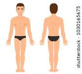 male body in underwear front... | Shutterstock .eps vector #1030165675