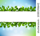 sale poster with leaves and... | Shutterstock .eps vector #1030198642