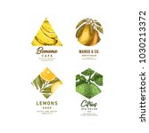 fresh fruit logo collection.... | Shutterstock .eps vector #1030213372