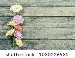 beautiful vintage gerbera... | Shutterstock . vector #1030226935