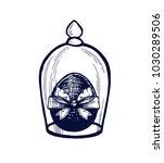 easter egg hand drawn isolated... | Shutterstock .eps vector #1030289506