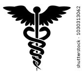 medical icon   caduceus   rod... | Shutterstock .eps vector #1030313062