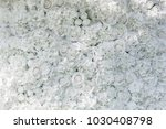 Stock photo white roses pattern wall love valentine or wedding background concept fresh natural backdrop 1030408798