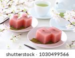 japanese traditional spring...   Shutterstock . vector #1030499566
