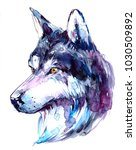 watercolor wolf. hand drawn... | Shutterstock . vector #1030509892