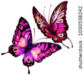 beautiful pink butterfly... | Shutterstock . vector #1030538242