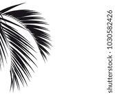 black silhouette  tropical palm ...   Shutterstock .eps vector #1030582426