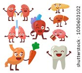 human organs healthy and... | Shutterstock .eps vector #1030603102