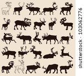 60 different original rabbits... | Shutterstock .eps vector #103062776