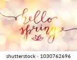 hello spring  vector lettering... | Shutterstock .eps vector #1030762696