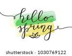 hello spring  vector lettering... | Shutterstock .eps vector #1030769122
