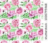 wildflower pink tea rosa flower ... | Shutterstock . vector #1030795468