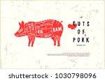stock vector pork cuts diagram...   Shutterstock .eps vector #1030798096