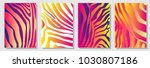 set of a4 covers with zebra... | Shutterstock .eps vector #1030807186