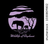 wildlife of elephant with... | Shutterstock .eps vector #1030809802
