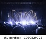 concert hall with people... | Shutterstock . vector #1030829728