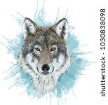 realistic vector wolf  ... | Shutterstock .eps vector #1030838098