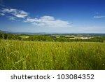fresh summer meadow and... | Shutterstock . vector #103084352