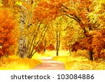 Autumn Leaves Woods Landscape