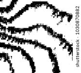 grunge black and white line... | Shutterstock .eps vector #1030870882