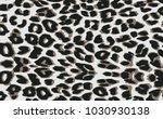 Stock vector luxury leopard vector background 1030930138