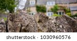 a traditional english cotswold... | Shutterstock . vector #1030960576