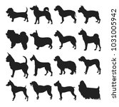 collection of dogs silhouette.... | Shutterstock . vector #1031005942