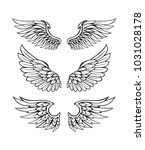 wings collection set | Shutterstock .eps vector #1031028178