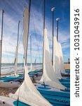 playa paraiso  mexico  ... | Shutterstock . vector #1031043916