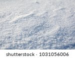 the snow is beautiful | Shutterstock . vector #1031056006