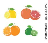fresh citrus fruits whole and... | Shutterstock .eps vector #1031166592