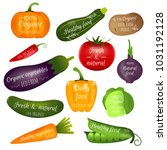 set of vegetables labels with... | Shutterstock . vector #1031192128
