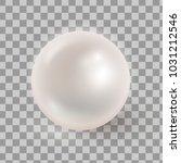 vector illustration of...   Shutterstock .eps vector #1031212546