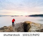 professional nature... | Shutterstock . vector #1031219692