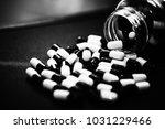pills in capsules | Shutterstock . vector #1031229466