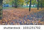 the fall in the city | Shutterstock . vector #1031251702