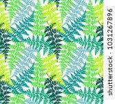 fern frond herbs  tropical... | Shutterstock .eps vector #1031267896