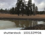 Semi Frozen Pond Jemez New...