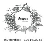 grapes frame hand drawing... | Shutterstock .eps vector #1031410768