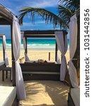 on the beach in playa de carmen ... | Shutterstock . vector #1031442856